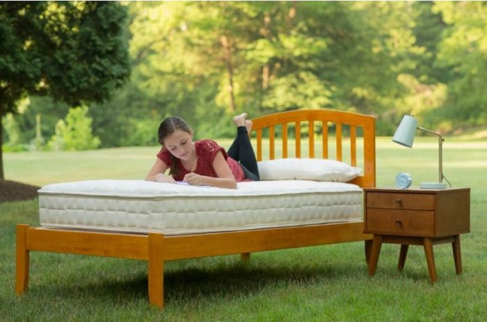 5 Best Mattresses For Kids In 2018 - Naturepedic Verse Kids Mattress Featured Image