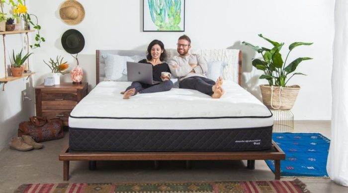 Best Mattresses For Sciatica — Nest Bedding Alexander Hybrid