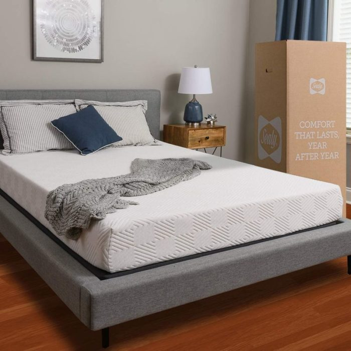 Best Mattress For Back And Neck Pain - Sealy Adaptive Comfort Layers Mattress