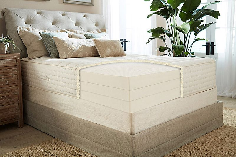 Best Mattress For Back Pain — Plushbeds Botanical Bliss