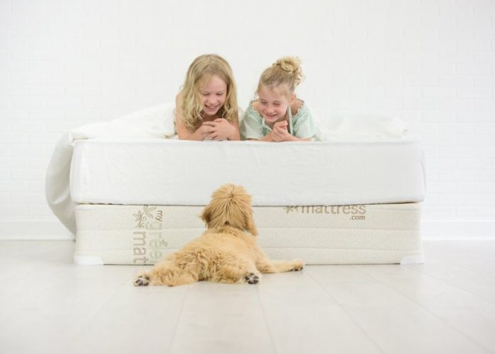 Best Mattresses For Bunk Beds - Pure Echo My Green Mattress